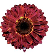 "24"" Foil Shape Balloon Burgundy Flower"